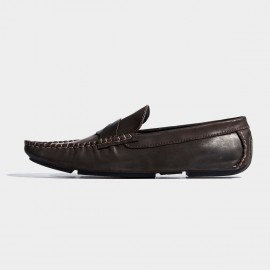 Herilios Pointed Toe Penny Coffee Loafers (H7105D01)