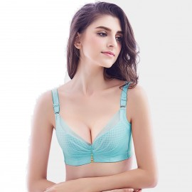 Olanfen Silky Butterfly Knot Mesh Detachable Straps Underwire Push Up Demi Cup Blue Bra (W6014)